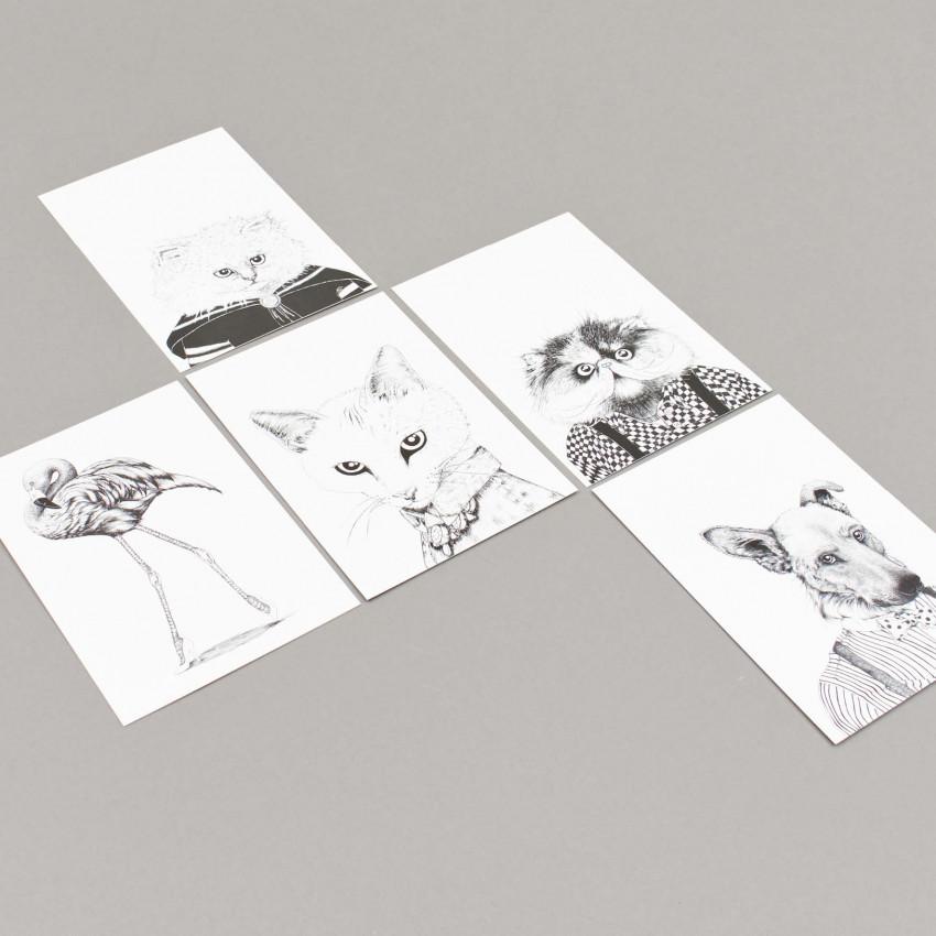 Karten von Gina Draws